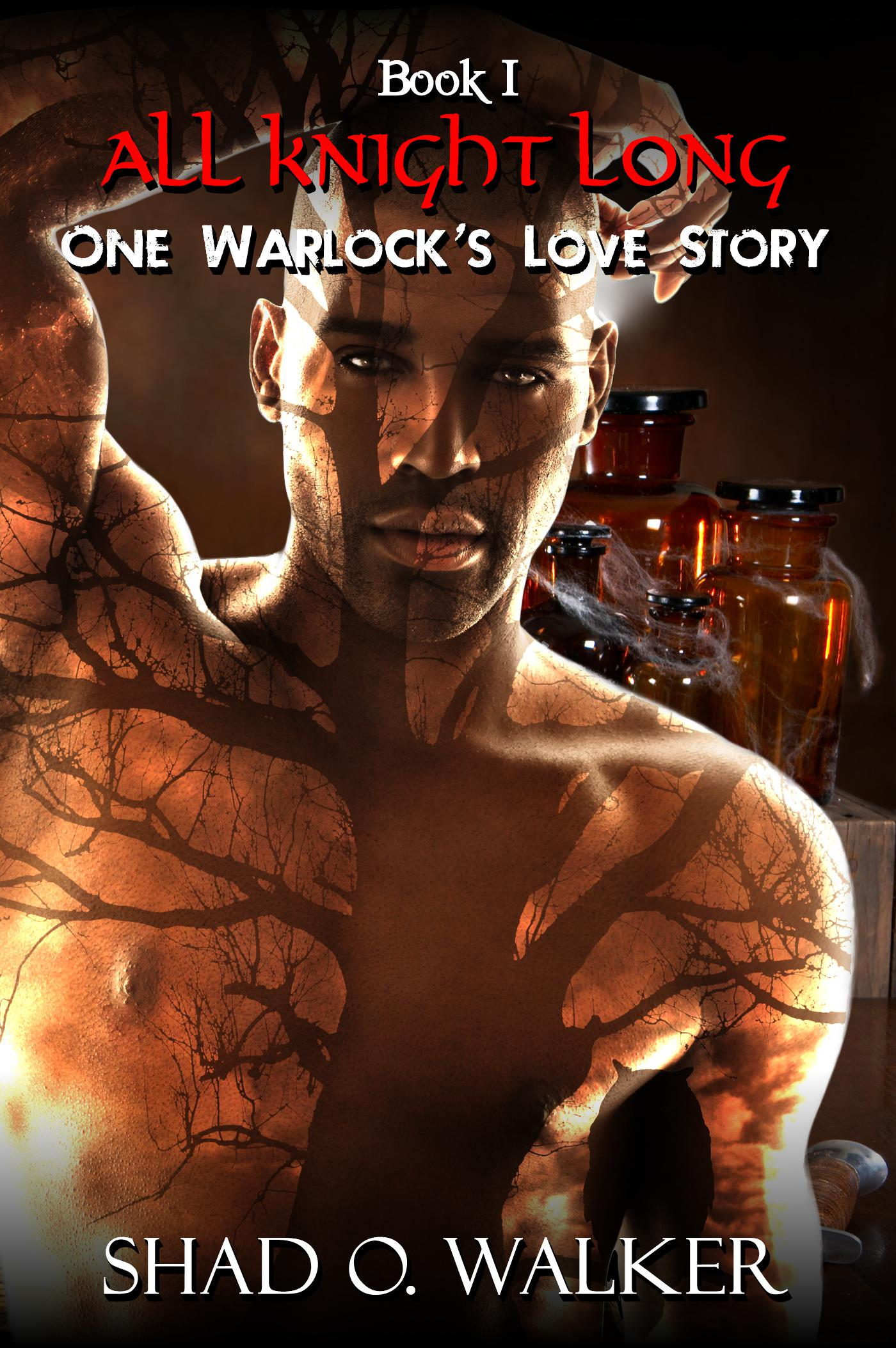 Check out this HOT Erotic Paranormal Romance Series, ONE WARLOCK'S LOVE STORY!